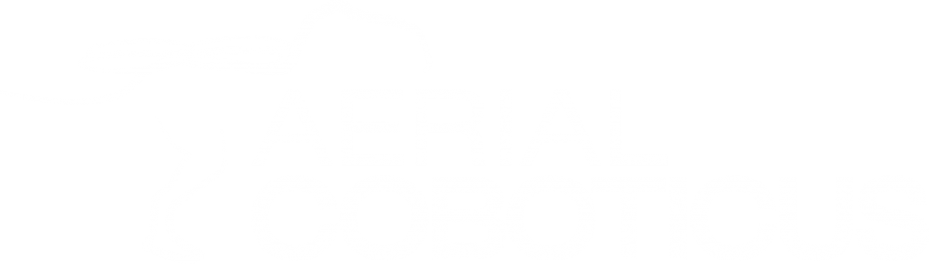 Logo Coboticus v3